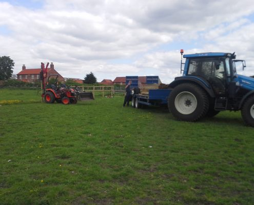 Grass Cutting Newark